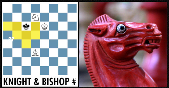Knight And Bishop Mate Online Course